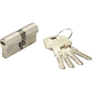 Cylindre de serrure débrayable L.30+30 mm BRICARD, mistral s