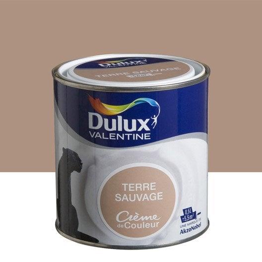 Peinture brun terre sauvage dulux valentine cr me de for Peinture interieure couleur