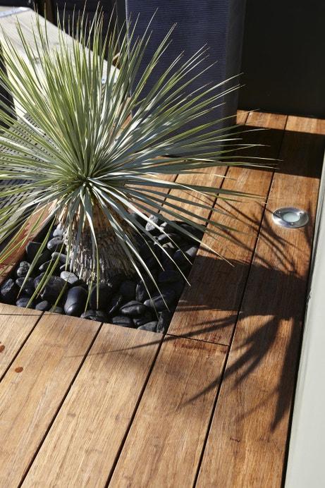 Les plantes incrustées dans la terrasse en bois