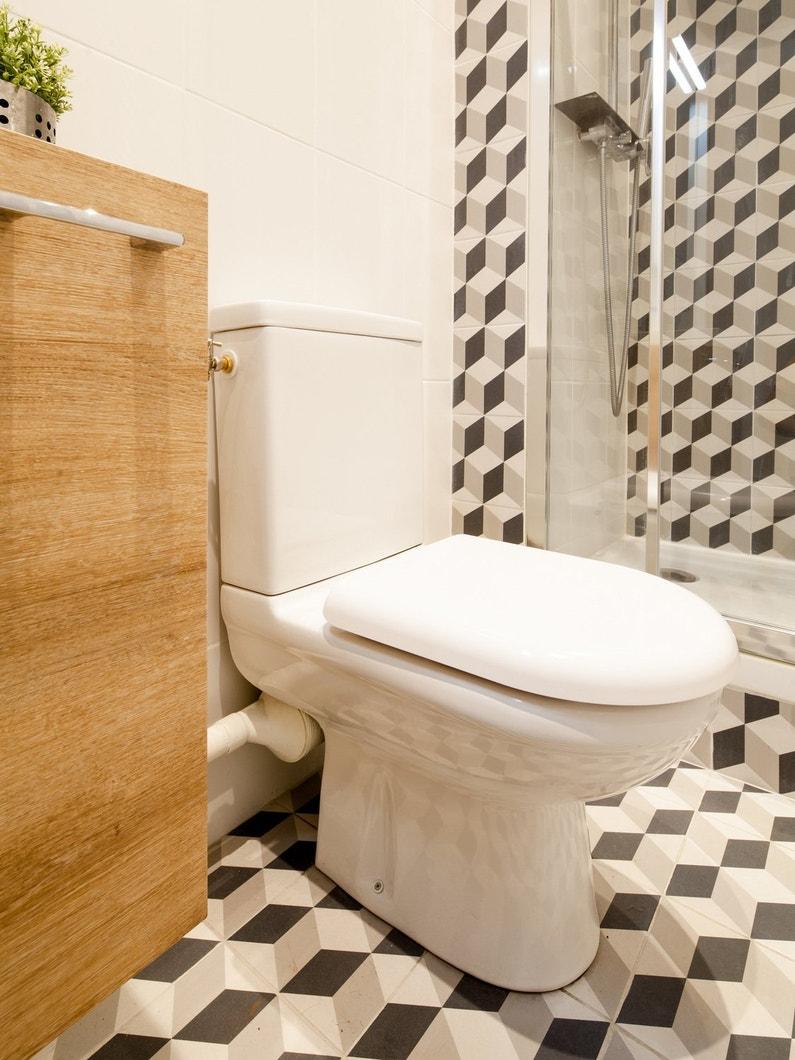 L 39 ventail inspir des wc poser - Leroy merlin toilette ...