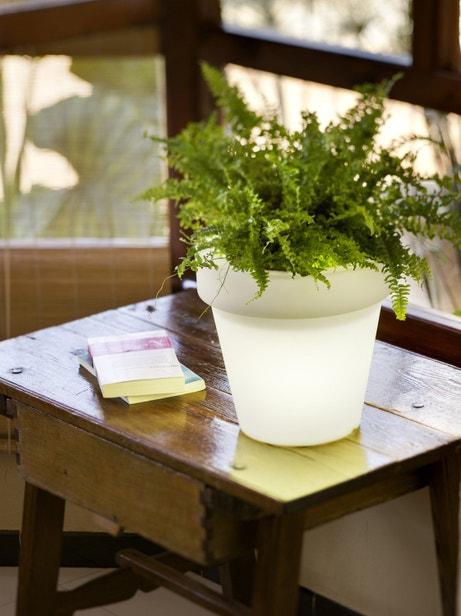 Un pot de fleurs pour l'intérieur et l'extérieur