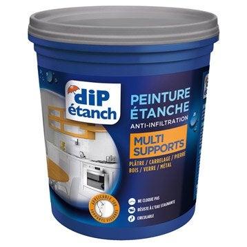 Peinture étanche Multi supports, DIP blanc 0.75 l