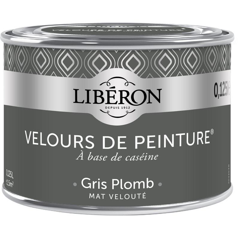 Testeur Peinture Gris Plomb Velours Liberon 25 Ml