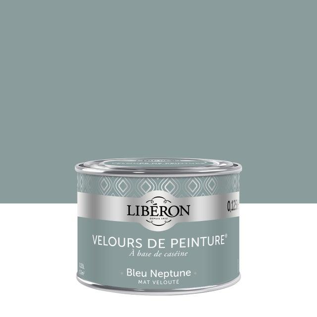 Testeur Peinture Bleu Neptune Velours Liberon 25 Ml