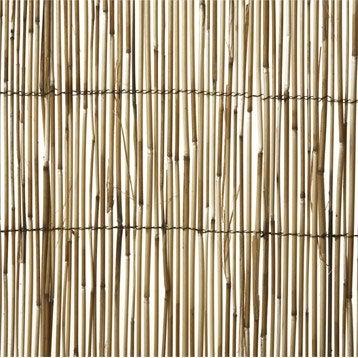 Paillon roseau NORTENE Reedcane, H.150 cm x L.500 cm
