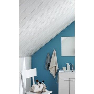 pose lambris pvc plafond sur rail devis en ligne cannes. Black Bedroom Furniture Sets. Home Design Ideas
