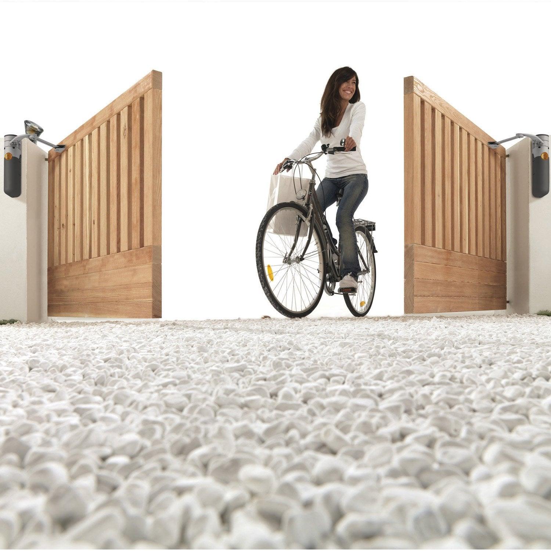 motorisation de portail bras mhouse by nice wt2s leroy. Black Bedroom Furniture Sets. Home Design Ideas