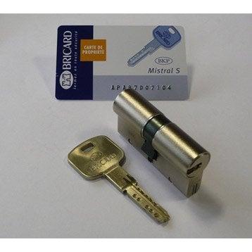 Cylindre de serrure 30+40 mm, 12 goupilles, BRICARD modèle Mistral s