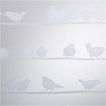 Revêtement vitrostatique Filippa, incolore, 0.45 x 1.5 m