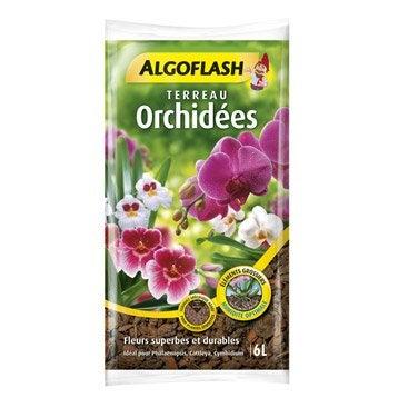 Terreau orchidées ALGOFLASH, 6 l