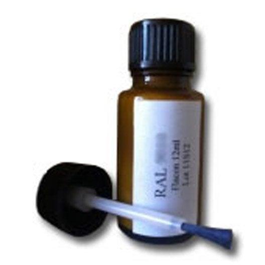 Retouche peinture pour baie coulissante noir 12 ml - Baie coulissante leroy merlin ...