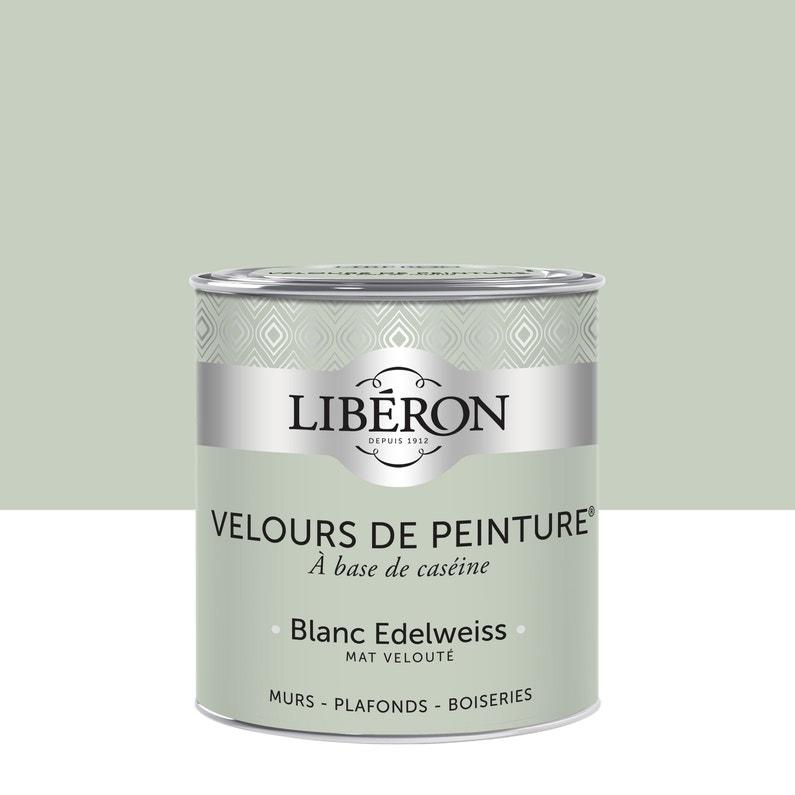 Peinture Multisupport Liberon Blanc Edelweiss Velours 0 5 L