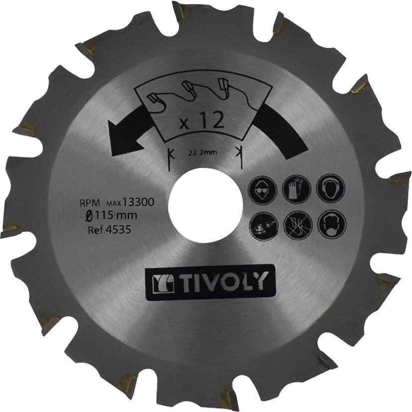 Disque à tronçonner le bois pour meuleuse 115mm Diam.115 mm TIVOLY   Leroy  Merlin 3a44612d2d44