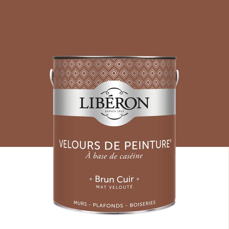 Peinture Multisupport Liberon Brun Cuir Velours 2 5 L