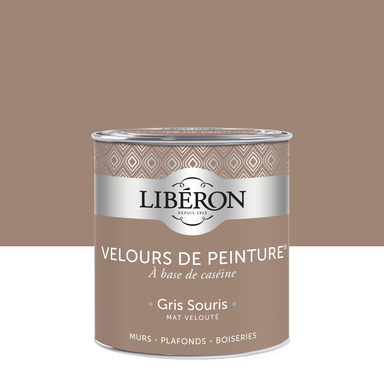 Souris Dans Les Murs Comment Faire peinture multisupport liberon gris souris velours 0.5 l