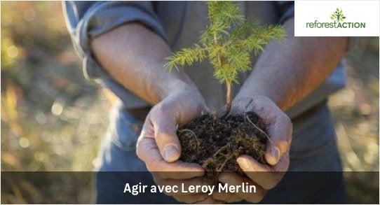 La sensibilización sostenible de leroy merlin anged
