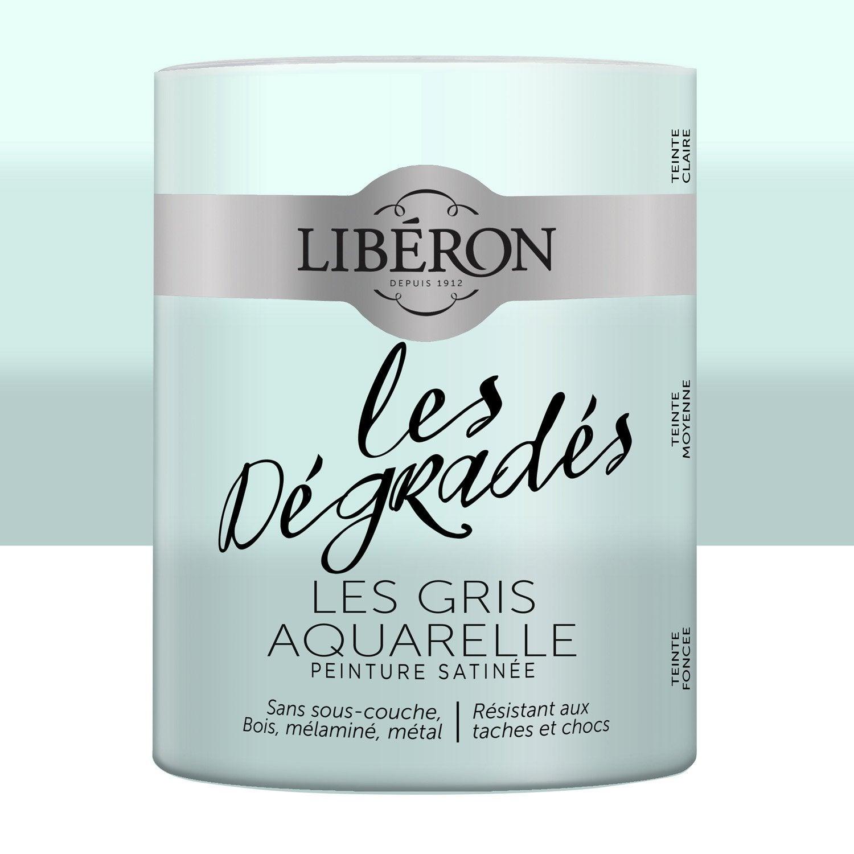 De Haute Qualite Peinture Pour Meuble, Objet Et Porte, Satiné, LIBERON, Les Gris Aquarelle  0.6 Bonnes Idees