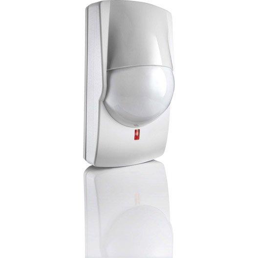 d tecteurs de mouvement pour animaux de petites tailles somfy 2400989 leroy merlin. Black Bedroom Furniture Sets. Home Design Ideas