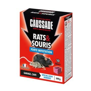 Meilleur Appat Souris anti nuisible - piège souris, taupe, guepe, moustiques au meilleur
