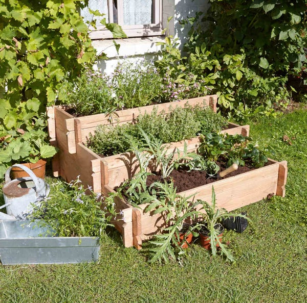 Tout savoir sur le potager leroy merlin for Organiser un petit jardin