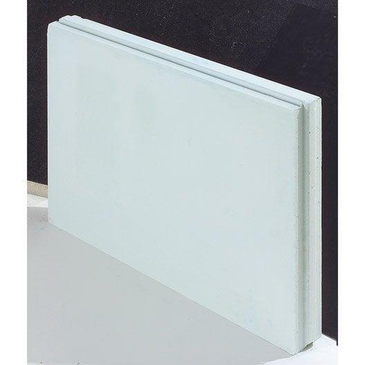 carreau de pl tre plein hydrofuge x x ep 7 cm leroy merlin. Black Bedroom Furniture Sets. Home Design Ideas