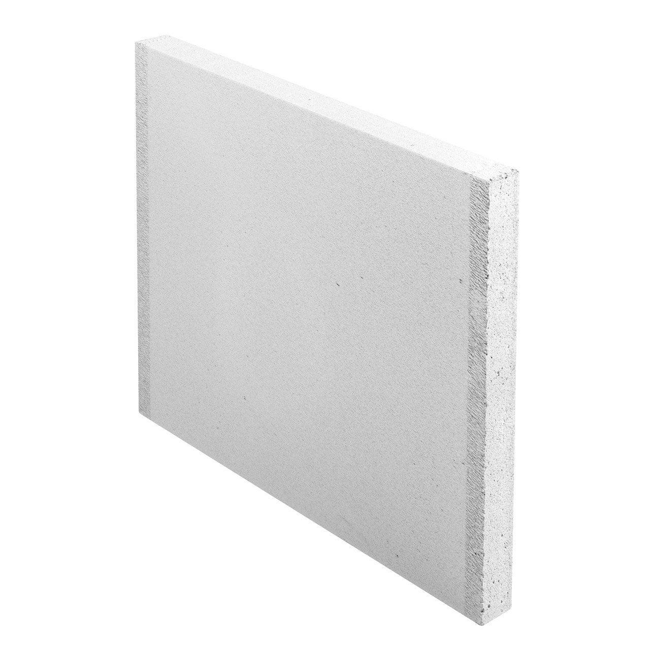 Carreau de b ton cellulaire lisse x x ep 5 cm ytong leroy merlin - Etancheite jardiniere beton ...