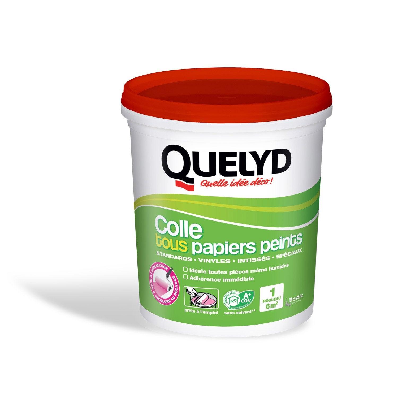 Colle tous papiers peints QUELYD, 1 kg | Leroy Merlin