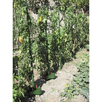 Tuteur bambou bois plaastique collier lien raphia protection et soin des cultures - Tuteur tomate bois ...