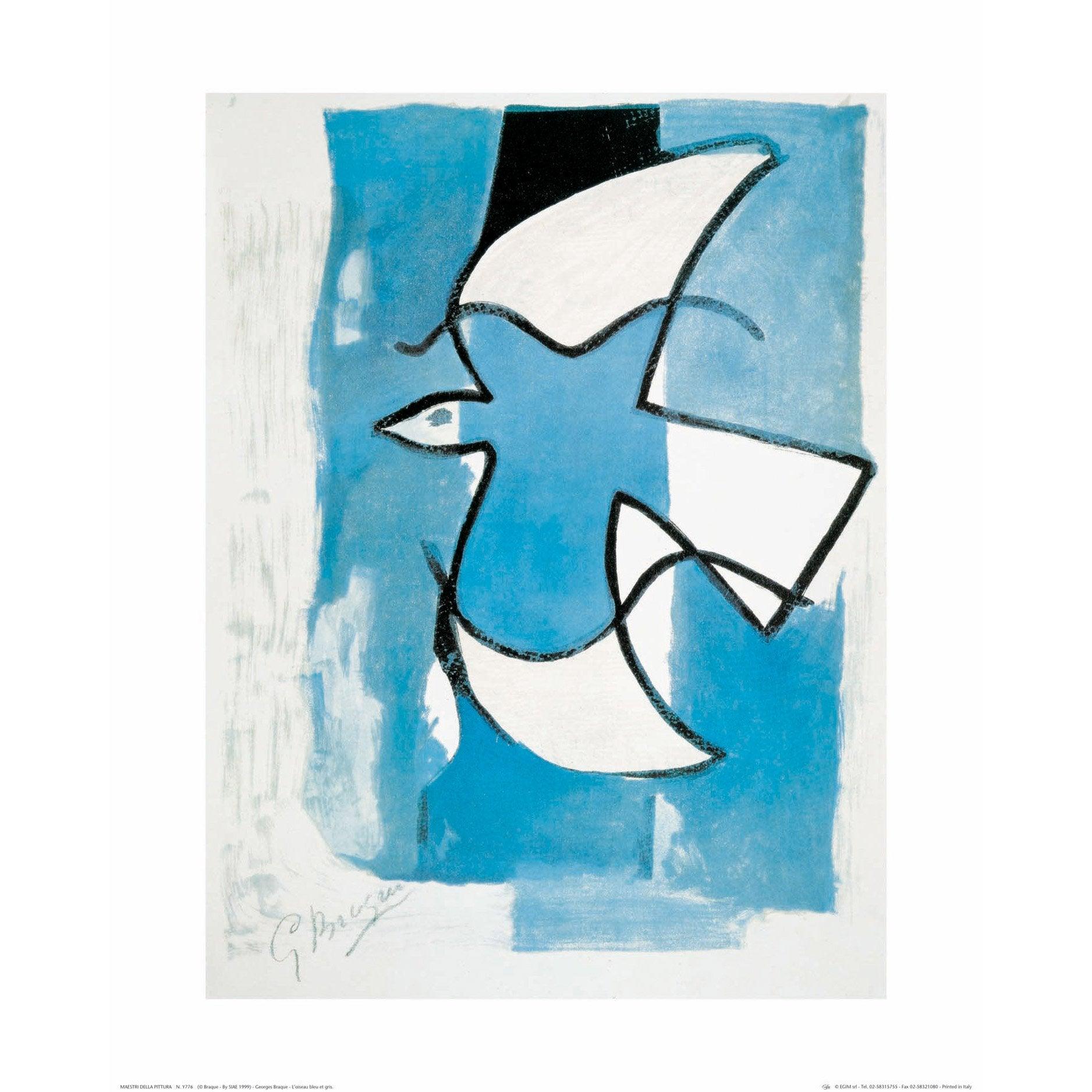 Affiche Oiseau bleu et gris l.40 x H.50 cm