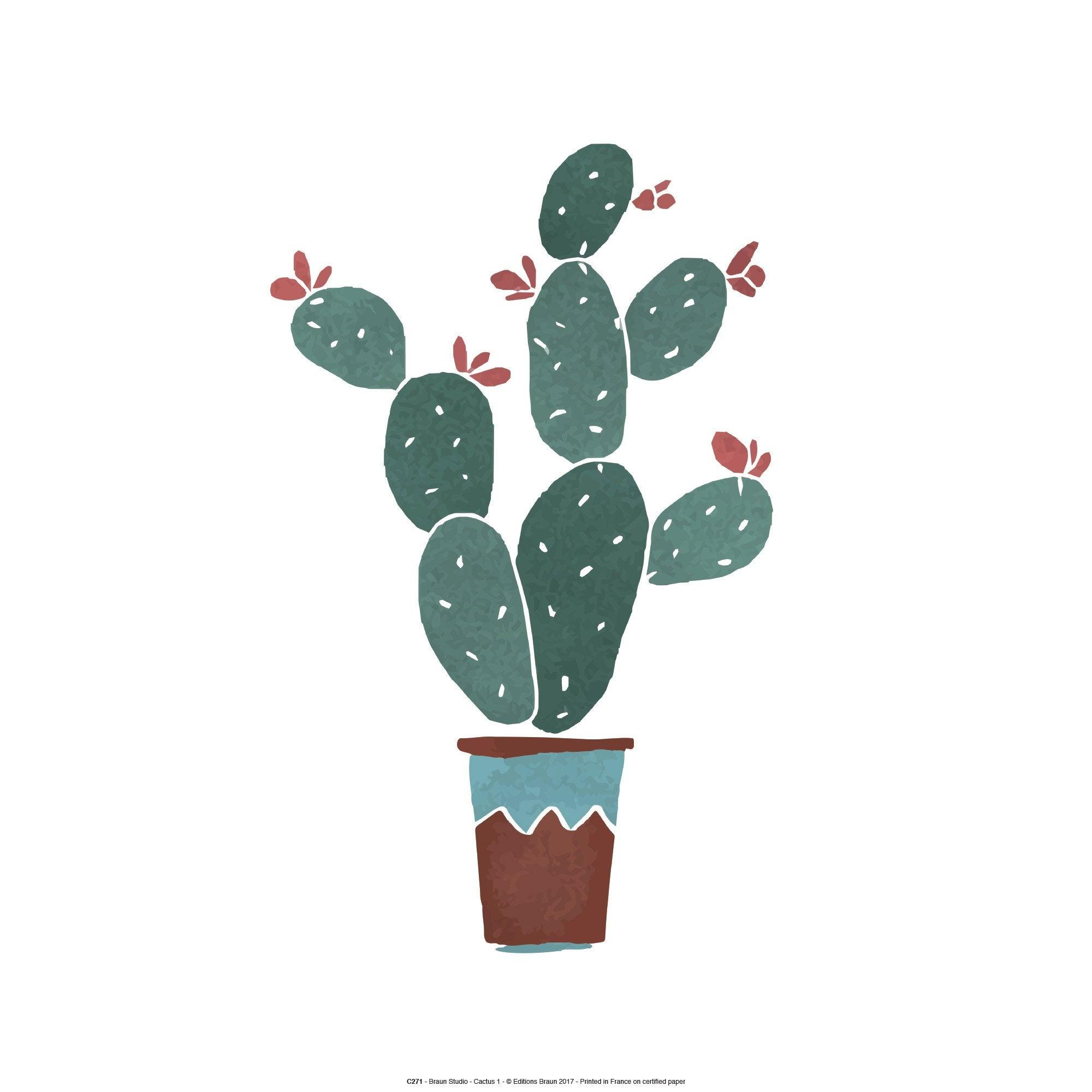 Affiche Cactus en fleurs l.30 x H.40 cm