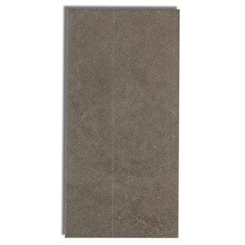 Faïence mur beige foncé, Astuce l.10 x L.20 cm