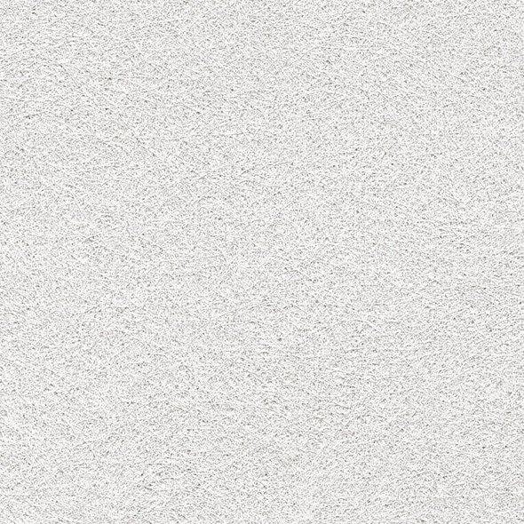 Voile De Verre Lanivit Lisse Et Prépeint Prépeint 200 Gm²