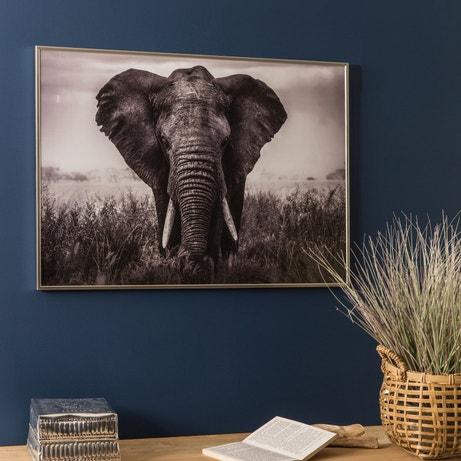 Donnez vie à vos murs, avec une affiche éléphant sous cadre