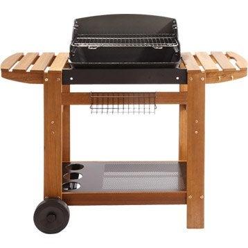 barbecue barbecue gaz electrique charbon leroy merlin. Black Bedroom Furniture Sets. Home Design Ideas
