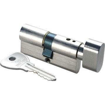Cylindre de serrure 30+30 mm, 5 goupilles, BRICARD modèle Alpha