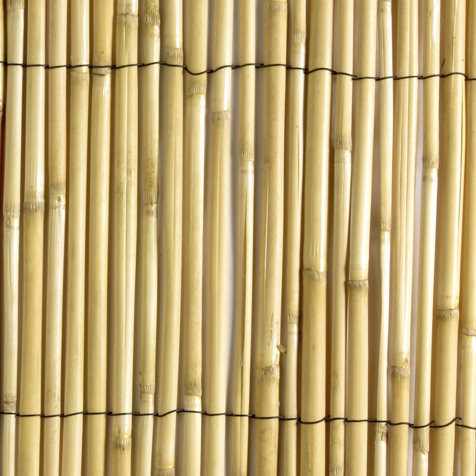 Canisse roseau beige, H.1.5 x L.5 m, 70% occultant, NORTENE | Leroy ...