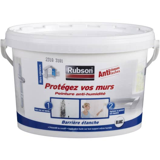 Peinture antihumidit prot gez vos murs rubson blanc 2 5 l leroy merlin - Produit anti moisissure mur ...
