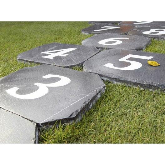 pas japonais abysse en pierre naturelle gris bleu leroy. Black Bedroom Furniture Sets. Home Design Ideas