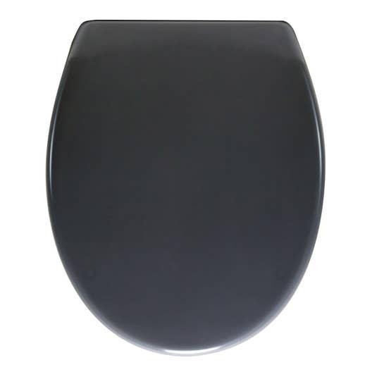 abattant frein de chute d clipsable gris plastique thermodur sensea klik leroy merlin. Black Bedroom Furniture Sets. Home Design Ideas