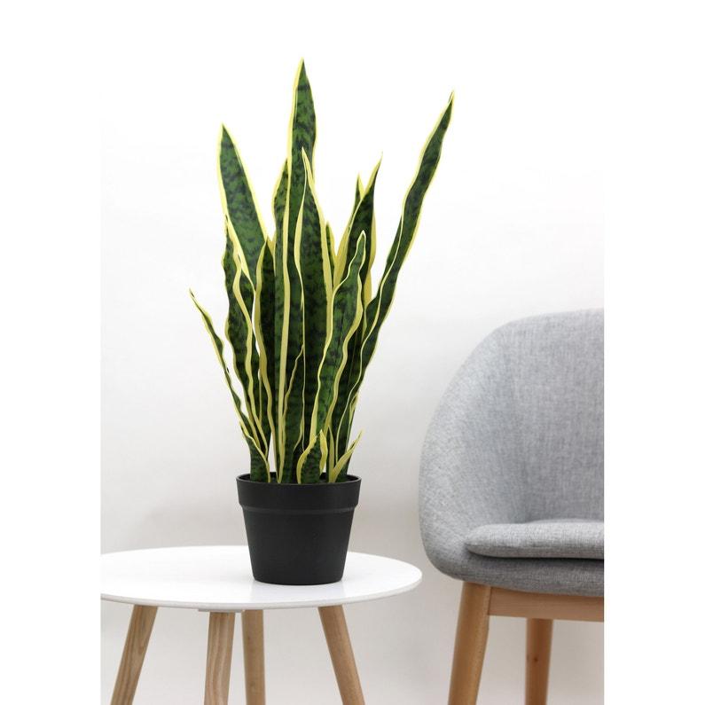 Plante Artificielle Sanseveria Pot Noir H66cm