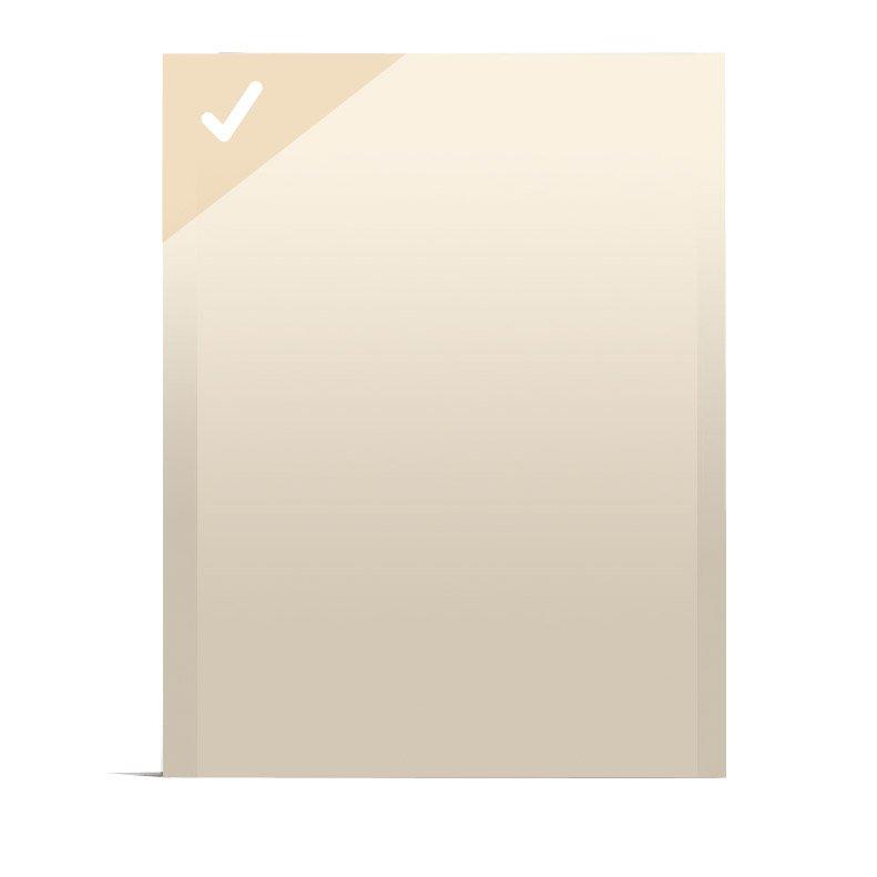 Plaque De Plâtre Ba 13 H125 X L90 Cm Standard Ce Siniat