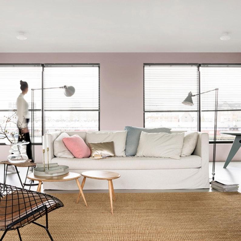 Peinture Blanc Plafond Protech Dulux Valentine Mat 2 5 L Leroy