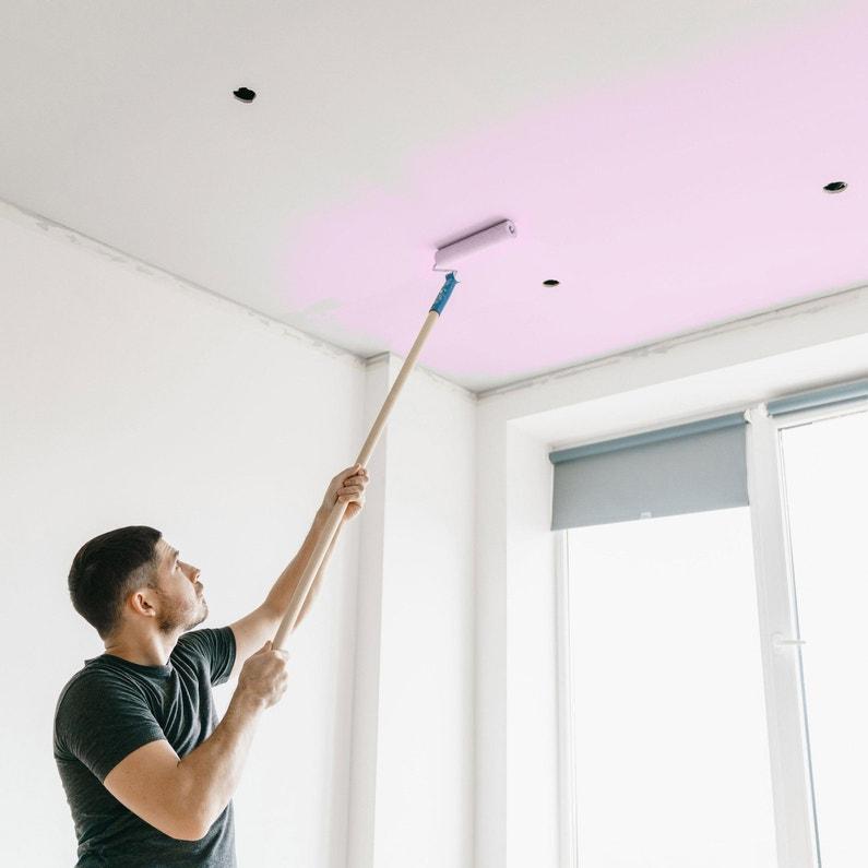 Peinture Blanc Plafond Repère Pro Tech Dulux Valentine Mat 6 L
