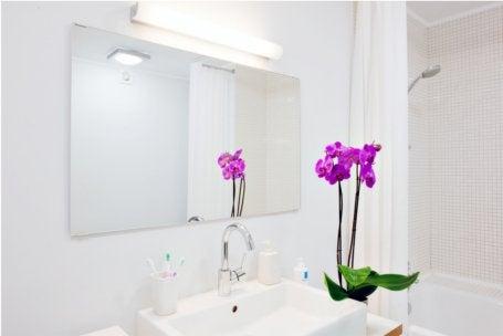 l'électricité dans la salle de bains | leroy merlin - Prise Electrique Salle De Bain