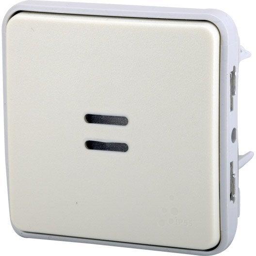 Poussoir tanche voyant lumineux legrand plexo blanc for Interrupteur exterieur legrand
