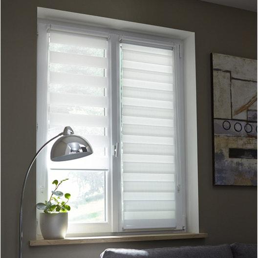 store enrouleur jour nuit coffre alu inspire gris blanc. Black Bedroom Furniture Sets. Home Design Ideas