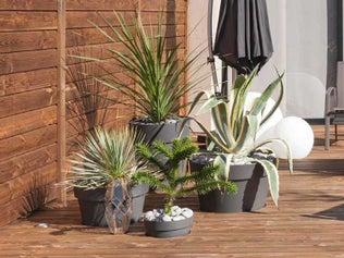 Encastrer des pots dans votre terrasse