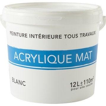 peinture blanche mur plafond boiserie peinture acrylique et glyc ro leroy merlin. Black Bedroom Furniture Sets. Home Design Ideas