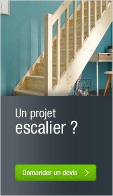 Escalier leroy merlin for Escalier interieur leroy merlin