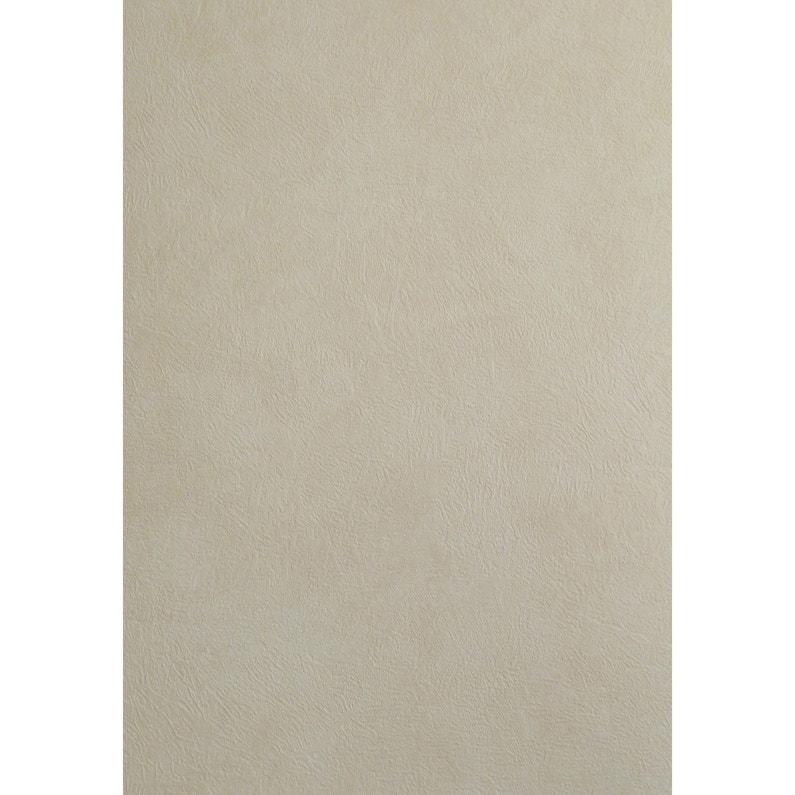 Papier Peint Beige Clair Brillant Intisse Sonetto Leroy Merlin